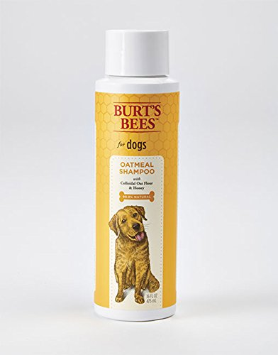 Burt's Bees Natural Oatmeal Shampoo for Dogs | Made with Colloidal Oat Flour and Honey | Best Oatmeal Dog Shampoo, 16 Ounces