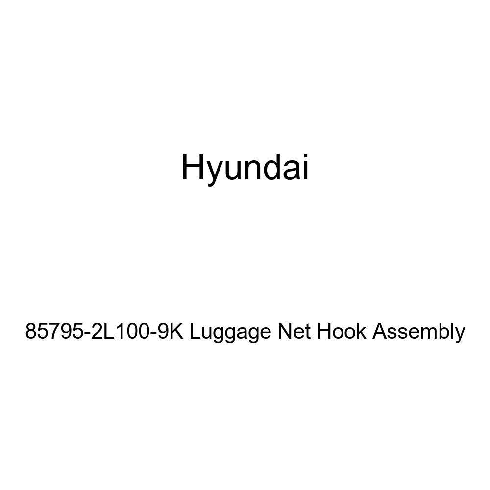 HYUNDAI Genuine 85795-2L100-9K Luggage Net Hook Assembly