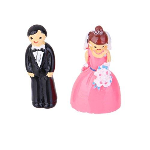 MagiDeal Miniature Fairy Garden Micro Landscape Dollhouse Bonsai Wedding Decor Lover (Bonsai Lover)