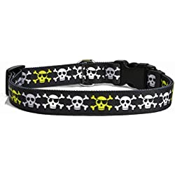 """Yellow Dog Design Boy Skulls Dog Collar 3/8"""" Wide and Fits Neck 8 to 12"""", X-Small"""
