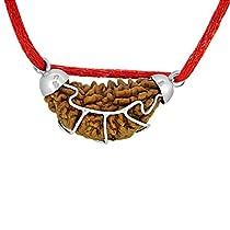 Arihant Gems & Jewels Rudraksha 1 Mukhi Indian Rudraksha & C