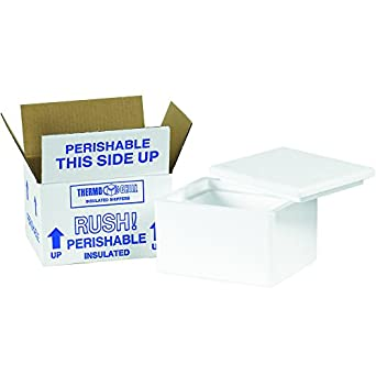 2b249bf0efa7 Amazon.com: Boxes Fast BF201C Insulated Shipping Box with Foam ...