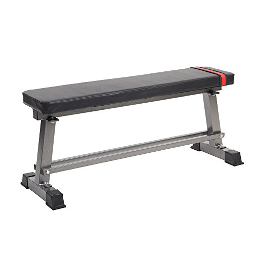 Dporticus Gym Quality Flat Weight Bench for Multi-Purpose Weight Training and Ab Exercises with Storage Rack by Dporticus