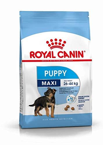 Comprar Royal Canin Alimento para Perros Maxi Puppy- 15 kg - Tiendas Online de piensos especiales perros - Envíos Baratos o Gratis 24/48H