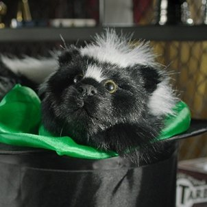 Sammy the Skunk - Magic Spring Animal with ONLINE access to original DVD content by Magic Makers