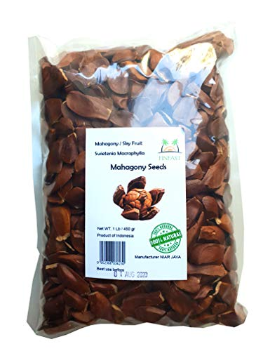 (FINFAST - 1 lb Mahagony Seeds (swietenia macrophylla))