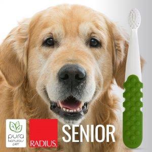Pura Naturals Pet Senior Dog Dental Kit - Softer Bristle Toothbrush & Organic Dental Gel (0.8 oz)