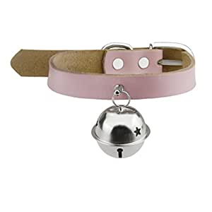 Amazon.com : BXT Genuine Leather Pet Collar with Alloy