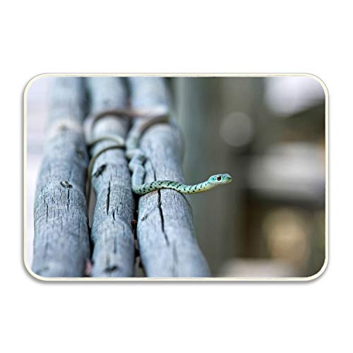 Niaocpwy Animals Snake Wood Branch Welcome Doormats Entrance Rug Floor Rubber for Garage, Patio, High Traffic Areas ()
