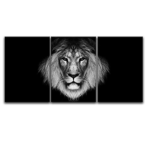 3 Panel A Lion Head on Black Background x 3 Panels
