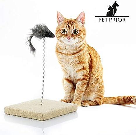 LCQI Juguetes para Gatos Plumas Entretenimiento Mascotas: Amazon ...
