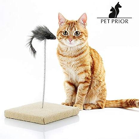 LCQI Juguetes para Gatos Plumas Entretenimiento Mascotas: Amazon.es: Productos para mascotas
