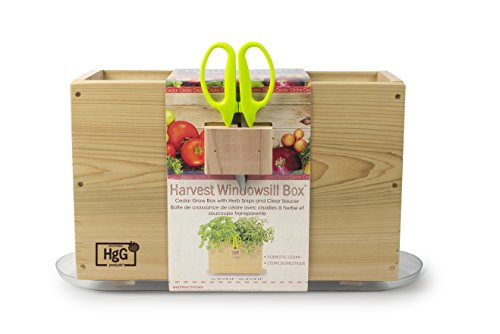 Architec Homegrown Gourmet Window Box, Cedar Grow Box with Clear Tray and Herb Snip Scissors by Architec