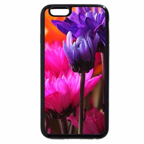iPhone 6S / iPhone 6 Case (Black) Vibrant Tulips