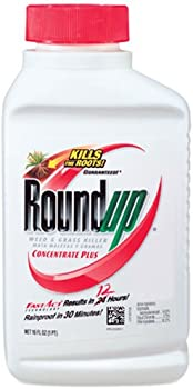 Roundup Weed and Grass Killer 16oz Concentrate Plus
