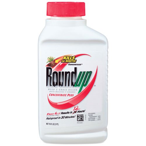 Roundup Weed & Grass Killer Concentrate Plus (Best Thing To Kill Weeds In Flower Beds)