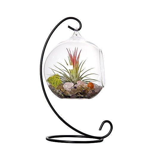 mkono-glass-vase-plant-terrarium-with-metal-stand-1-globe