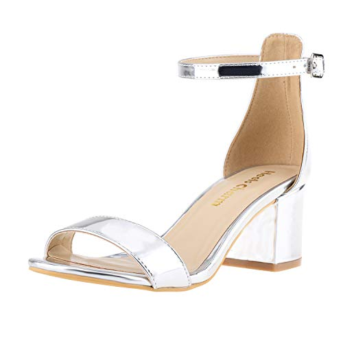 Women's Strappy Chunky Block Low Heeled Sandals 2 Inch Open Toe Ankle Strap High Heel Dress Sandals Daily Work Party Shoes Silver Size 9
