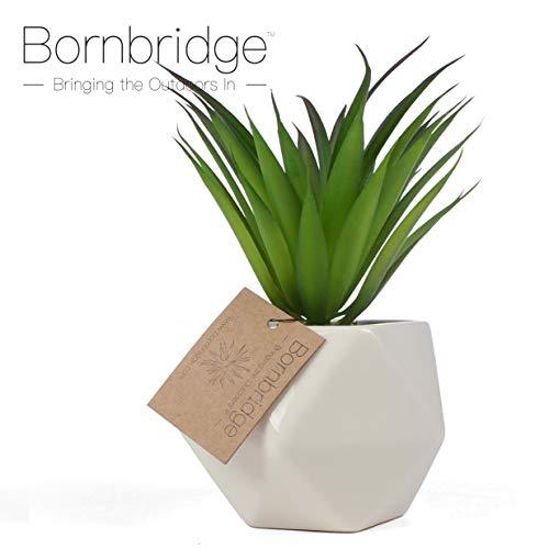 Bornbridge Artificial Succulent - Fake Succulent in Planter - Faux Succulent with Ceramic Geometric Planter - Agave Stricta Succulent - Artificial Potted Plant - Artificial Potted Plant