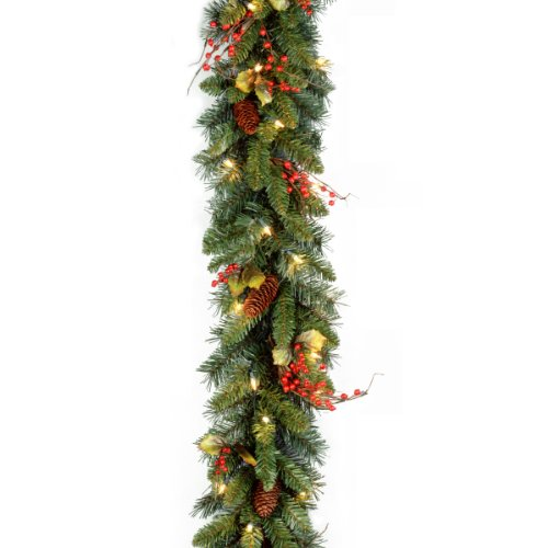 National Tree 9 Foot by 10 Inch Classical Collection Garland with Cones, Holly Leaves, Red Berries and 50 Clear Lights (CC1-301-9A-1) (Outdoor Garland Range)