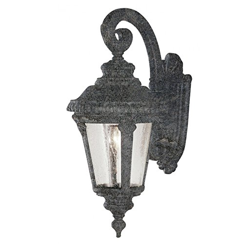 Transglobe Lighting 5043 SWI Outdoor Wall Light with Seeded Glass Shade, Swedish Iron Finished