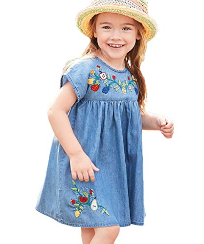 HILEELANG Kids Baby Girl Basic Short Sleeve Dress Jumper Casual Denim Fruit Embroidered Dress Cotton Dress Blue