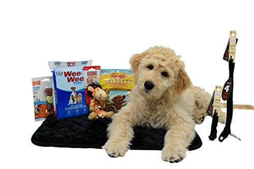 Puppy Package (Puppy Starter Kit Bundle Basics- Essentials Package)