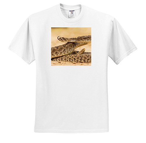 Diamond Texas Plate - 3dRose Danita Delimont - Snakes - Texas, Hidalgo CO, Western Diamondback Rattlesnake Coiled To Strike. - T-Shirts - White Infant Lap-Shoulder Tee (24M) (TS_260096_69)
