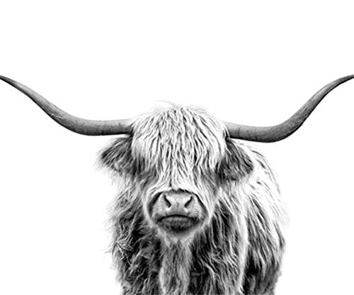 (JOLOMOY Paint by Numbers Kits for Adults, DIY Digital Oil Painting by Number for Kids Beginner - Gray Yak Cattle Cow OX 16X20 inch Number Painting (Framed))