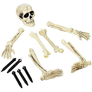 Lawn Skeleton | Halloween Decoration
