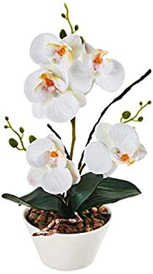 Imiee Silk Flowers With Pot 31cm In Height Artificial Orchid Phalaenopsis Arrangement Flower Bonsai With Vase For Room Table Centerpieces H 12 White Amazon Sg Home