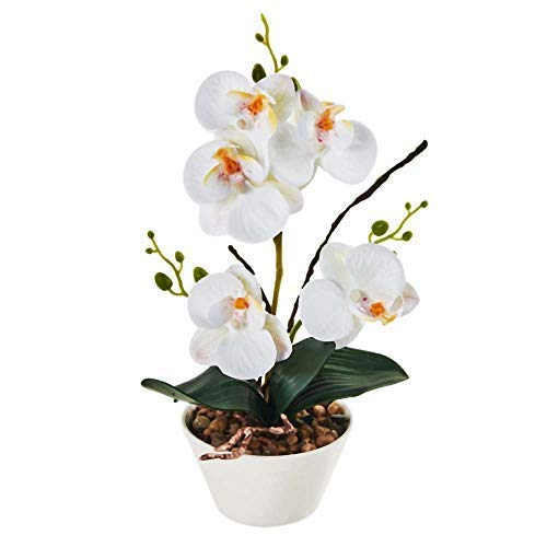 """IMIEE Silk Flowers with Pot 31cm in Height Artificial Orchid Phalaenopsis Arrangement Flower Bonsai with Vase for Room Table Centerpieces-H:12"""" (White) ()"""