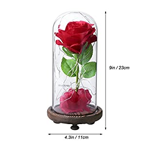 LEDMOMO Red Silk Rose and Led Light with Fallen Petals in a Glass Dome on A Wooden Base Artificial Rose Flowers USB Night Light Gift for Valentine's Day Anniversary Wedding Birthday 3
