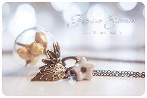 Collar de globo de cristal jazmín, colgante de flor seca, vidrio orbe joyas,