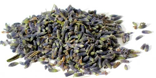 Lavender Flowers Whole, Dried Herb, 1 Oz - Lavender Herb