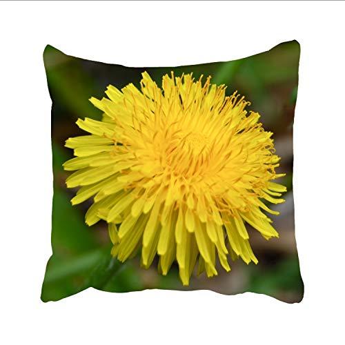 Ranhkdn Cotton Linen DandelionFlower Throw Cushion Cover Home Decorative Indoor/Outdoor Pillow Sham 18 X 18 Inch