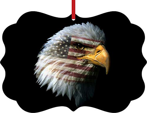 Rosie Parker Inc. USA Flag Imprint in Bald Eagle Patriotic Double Sided Elegant Aluminum Glossy Christmas Ornament Tree Decoration - Unique Modern Novelty Tree Décor Favors
