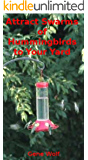 Attract Swarms of Hummingbirds to your Yard