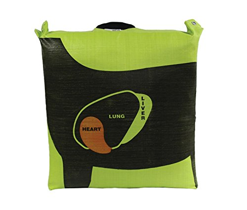 Hurricane Bag Archery Target