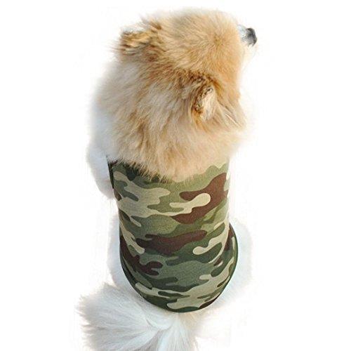 DDLBiz Classic camouflage Ventilation Comfort