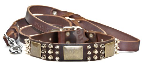 Dean & Tyler 18-Inch Crazy Combo Collar with 6-Feet Matching Love to Walk Leash, Brown (Crazy Tyler Combo)