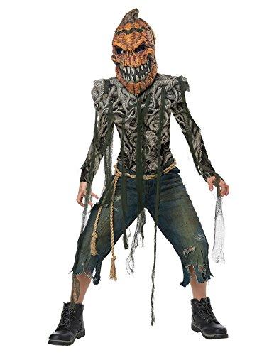 California Costumes Monster Patch, Jack o Lantern, Plant Pumpkin Creature Boys Costume, Multicolor, X-Large