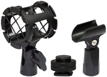 D3300 D750 D5100 D810 D5500 D500 D7200 D5600 Cameras D810a D610 D3200 D7100 D5300 D4S D300s Professional Advanced Broadcast Microphone and accessories Kit for NIKON DSLR D5
