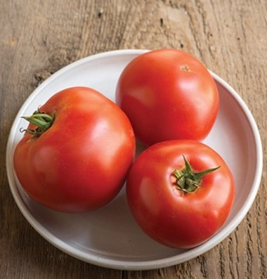 David's Garden Seeds Tomato Beefsteak Big Beef OS2063 (Red) 50 Hybrid Seeds - Big Beef