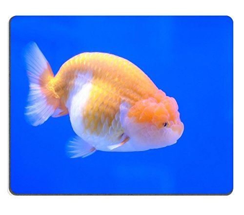 Liili Mouse Pad Natural Rubber Mousepad Goldfish Closeup in Water on Blue Background Image ID ()