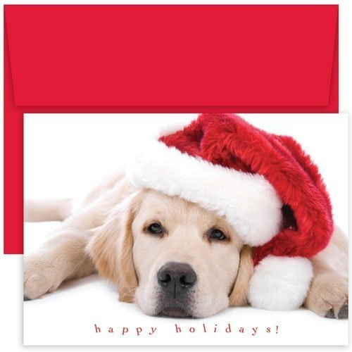 Hortense B. Hewitt Great Papers! Holiday Greeting Card, Santa Puppy, 18 Cards/18 Envelopes, 7.875