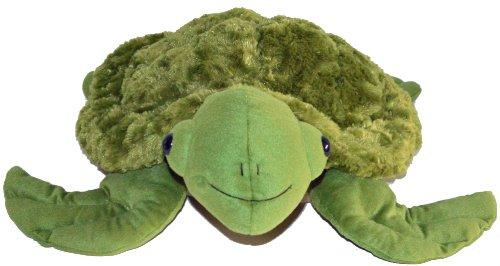 SID (Sensory Intensive Development) The Sea Turtle (Weight Lifting Stuffed Animal)