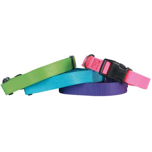"""Guardian Gear Nylon Adjustable Dog Collar, Fits Necks 18"""" to 26"""", Electric Lime"""