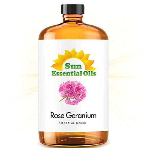 Rose Geranium (Mega 16oz) Best Essential Oil