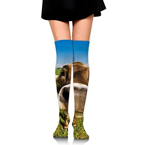 Knee High Tube Socks For Girls, Women's Cute Wallpaper Desktop Cow Prints Over Thigh High Long Stockings